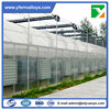 Customized Size Poly Tunnel Single Span
