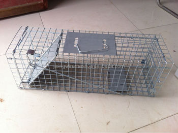 Animal Traps cages