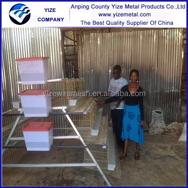 layer/broiler/breeder chicken cage system/breeder egg laying cage for Lagos poultry chicken farm