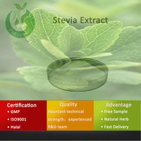 Professional Manufacturer Supply Natural Extract Organic Stevia Extract
