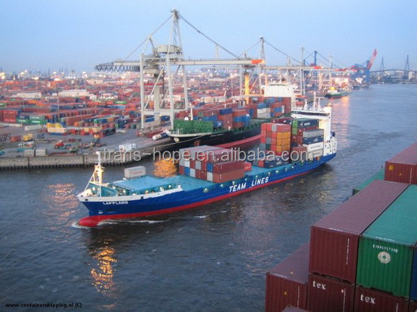 Good quality best sell shanghai shipping company to st etienne