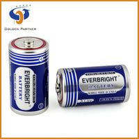 D size R20 1.5V Battery Cell manufacture factory
