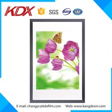 Wall Hanging Lenticular Painting 3D Pictures For Decorative