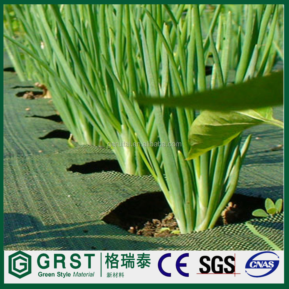 100% PP Woven Agriculture weed mat/Mulch Film/ground cover