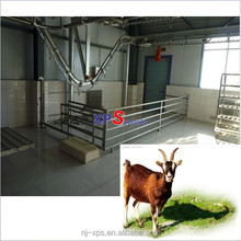 Goat Sheep Slaughter:sheep (mutton goat caprine toggenburg) Lift Machine is the essential equipment in slaughtering product line