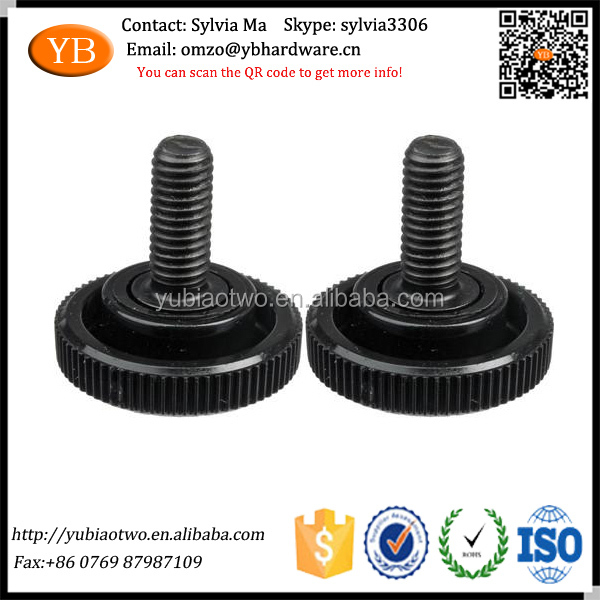 Custom Drawing Produced Black Flash Screw for Plate