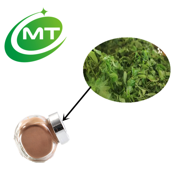 Beverage Ingredient 30% polyphenols Instant Black Tea Extract Powder