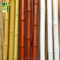 HOT  ZY 1008 Bamboo Canes