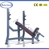 Professional Gym Incline Bench Press