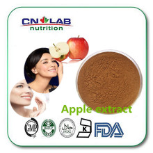 Free sample,bulk apple extract powder,lower price polyphenol