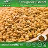 Top quality and low price Fenugreek Extract Powder, Fenugreek Extract, Fenugreek Powder