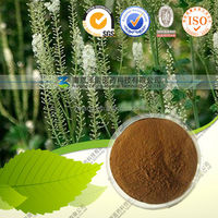 Best Price Natural Black Cohosh P.E.Cimicifugoside /HPLC