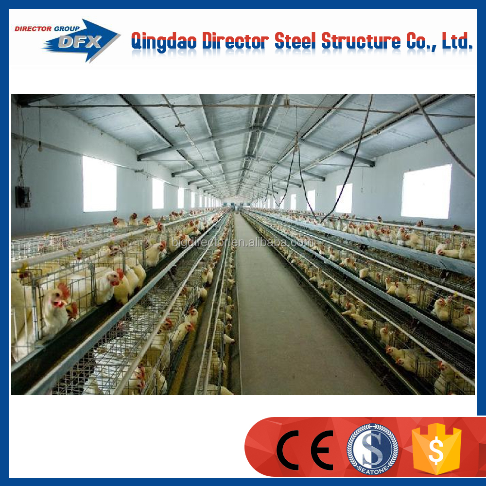 Standard steel prefab chicken layer farm in India