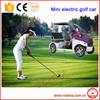 Mini electric golf car accessory / tuning car accessory