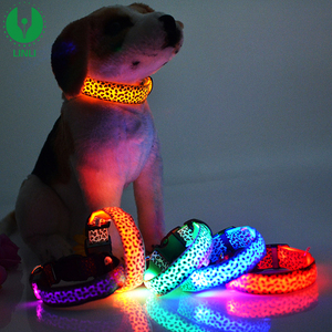 Wholesale Led Flashing Nylon Dog Training Leash And Collar In Set