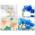 Romantic Style Flowers Giclee Print Butterfly Orchid Pictures Canvas Print for Decoration Wholesale 4 Pieces