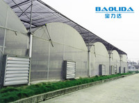 large multi-span PE film green house agriculture & commercial used greenhouse
