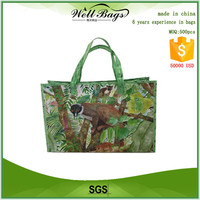 PP Woven printed eco friendly tote bag, PP Woven bag printed,eco friendly bag