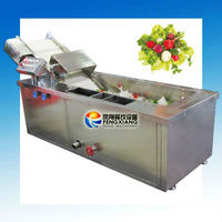 ~Manufacturer~ water bath type FRUIT WASHING MACHINE with Ozone (Water Recycle) (100% Stainless Steel) SKYPE: selina84828