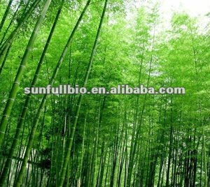 natural Bamboo extract powder 10% 20% Flavonoids