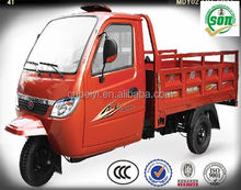 Dayang 250cc water Enclosed cabin tricycle