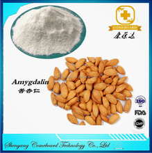 Amygdalin Extract / Bitter apricot seed extract / Vitamin B17