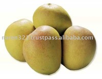 Freah Alphanso Mangoes Fruit