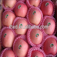 fresh fuji apple scientific name of all fruits