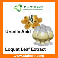 Ursolic Acid Manufacturer Supplier Loquat Leaf Extract 10%-98% Ursolic Acid professional formula natural extract