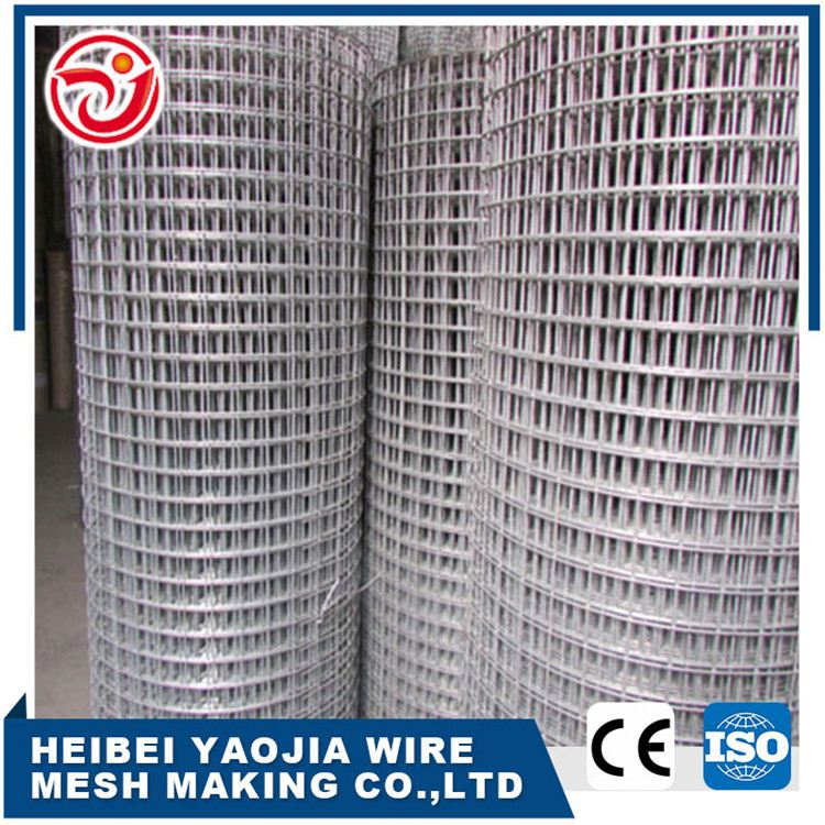 Factory direct offer Galvnaized Welded Wire Mesh