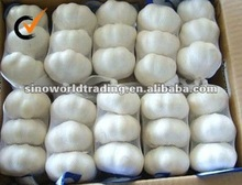 Chinese pure white garlic