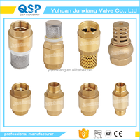 Taizhou Junxiang Factory price free sample 1/2 inch galvanized check valve