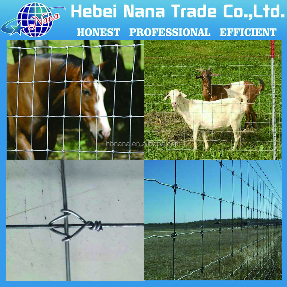 Wholesale !! small galvanized animal fence ( factpry )