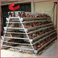 Cheap price for chicken cage layer poultry / industrial chicken coop /chicken layer cage price