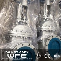 WFE API 600Stainless Steel Big Size Flanged End Gear Operation Gate Valve