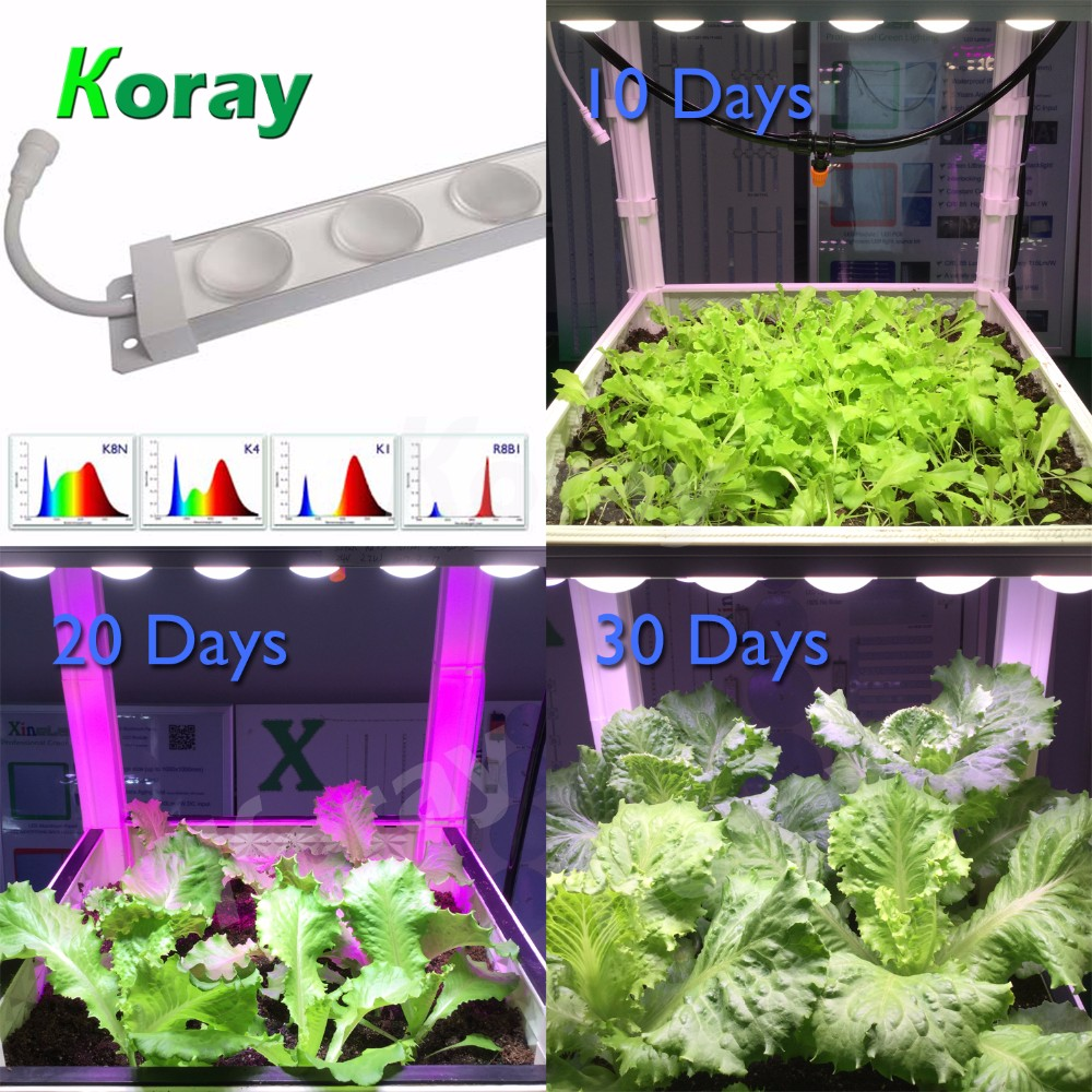 Provides a different light spectrum to your plants Hydroponic LED Grow Plant Light