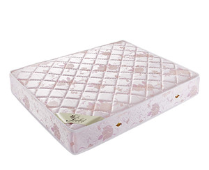 Isabel health care coconut coir mattress of single size