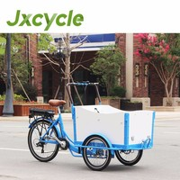 Europe Hot sale cargo bike CE approved Brushless motor Electric Cargo trike