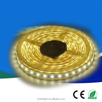 CE&RoHS cerificated wholesale continuous length flexible led light strip