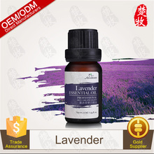 Bulk Wholesale France Lavender Extra Pure Essential Oil
