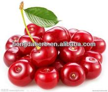 Best Quality Acerola Cherry Powder Extract