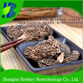2017 Hot sale mushroom, morel mushrooms for sale