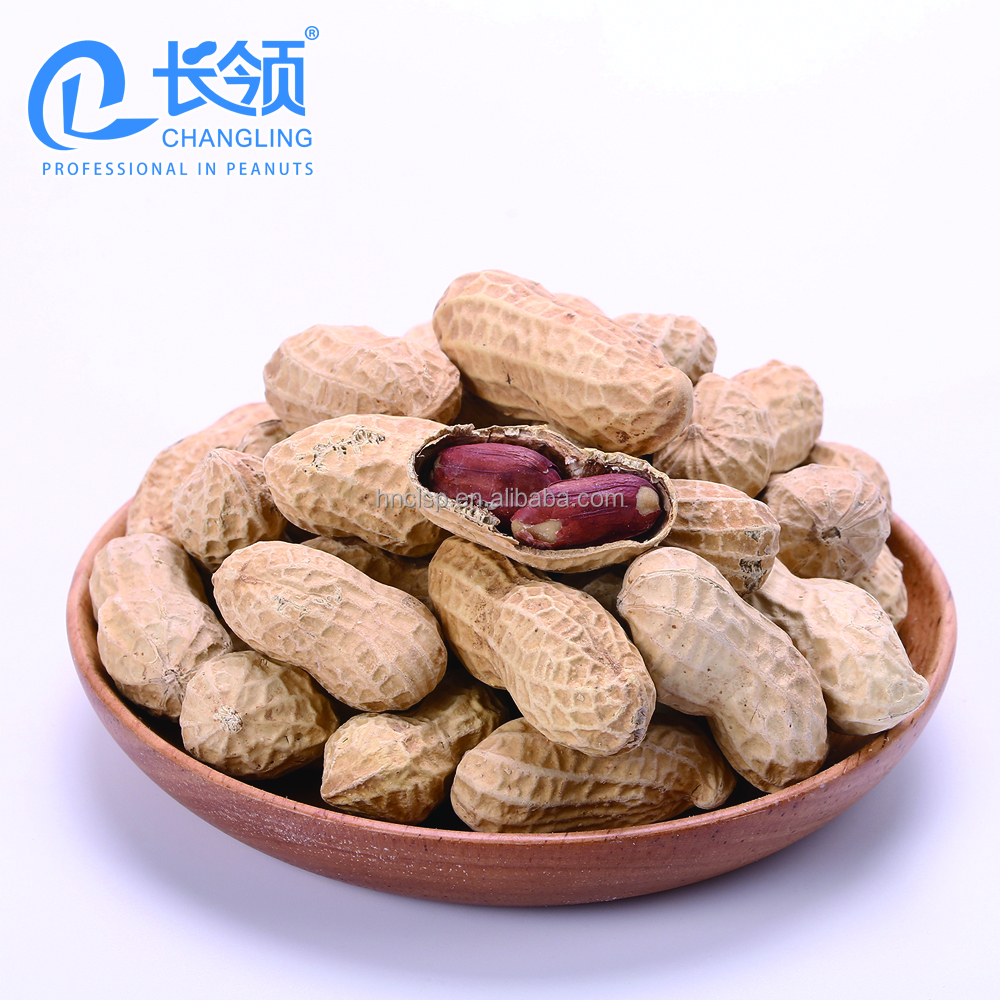 Chinese top grade wholesale peanuts