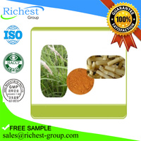 Chinese Herbal Medicine Lalang Grass Rhizome Extract