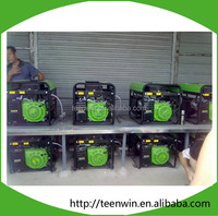 Teenwin small sizes methane bio gas generator