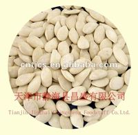Chinese flavor roasted and salted pumpkin seeds