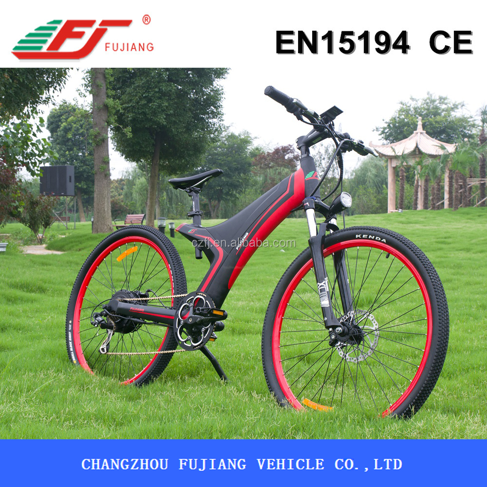 Mountain conqueror hub motor electric bicycle, electric bicycle crank motor