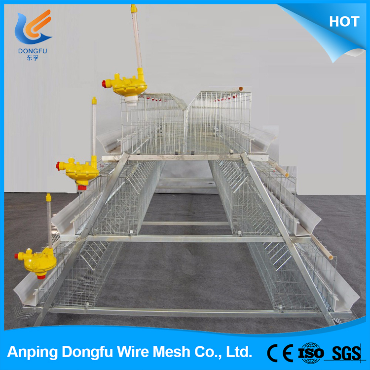 Poultry farm chicken layer cage price for sale