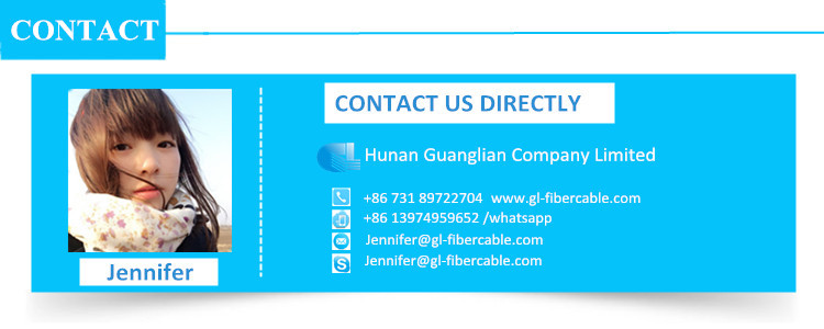 Steel tape armored 12 cores fiber optic cable
