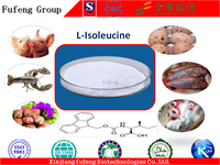 Feed Grade Amino Acids L-Isoleucine for Animal Nutrition